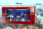 "Wallaquarium livingwall "" Deluxe "" LW105  Red hawai"