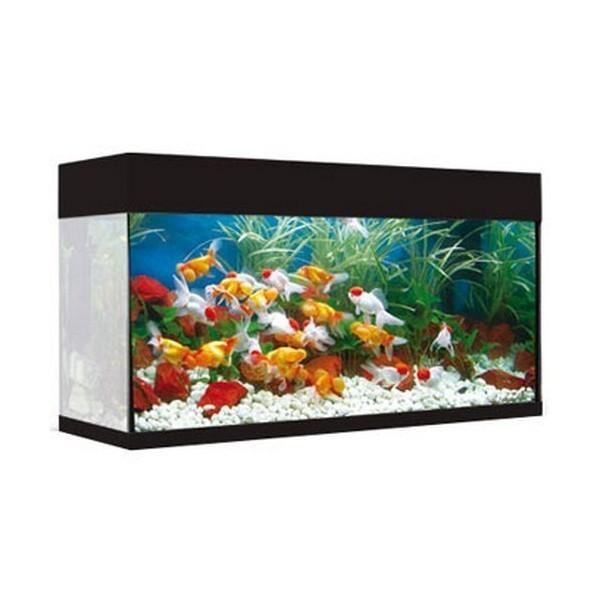 Aquarium aqualux 120 black 120l 79 7x34 7x50cm for Aquarium 120l