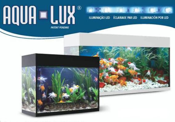 Acuario marino aqualux 80 blanco 80l 59 7x34 7x45cm for Acuario marino precio