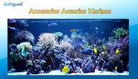 Accesorios acuarios marinos equipo osmosis bombas marea sal for Accesorios para acuarios marinos