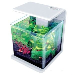 Acuario nano Biotop Natur DELUXE 15 litros LED con filtro incluido