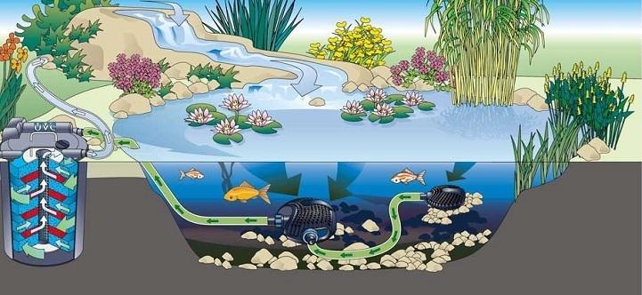 Filtro a presi n oase filtoclear 3000 uv 9w para estanques for Filtro para estanque de tortugas