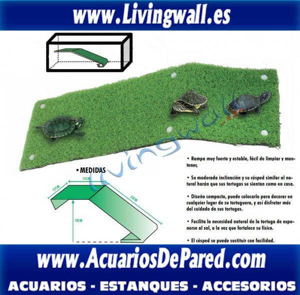 rampa_tortuguera_modelo_florida_para_tortugas,reptiles,ranas