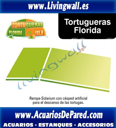 tortuguera-florida-con-rampa-solarium-cesped-tortuga-tortugas-reptiles-terrario-acuario-urna_tortuga