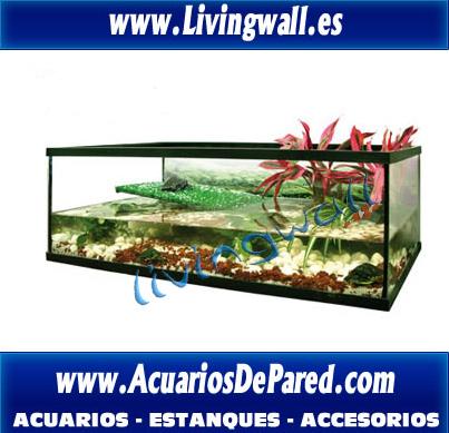 tortuguera-florida-con-rampa-solarium-cesped-tortuga-tortugas-reptiles-terrario-acuario-urna_tortuga_y_reptil