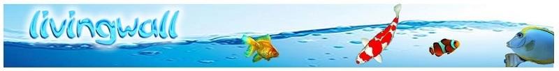 Filtro externo jebo serie 800 para acuarios tropicales y for Estanques online