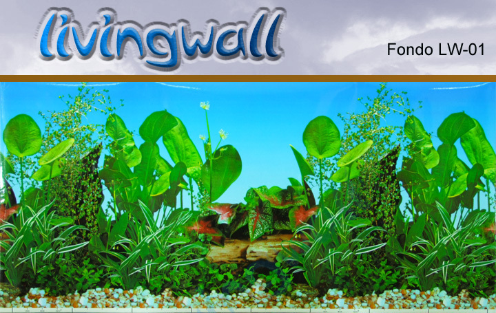 Background For Aquarium Lw 01 Wall Aquarium Wandaquarium Ponds Marine Aquariums