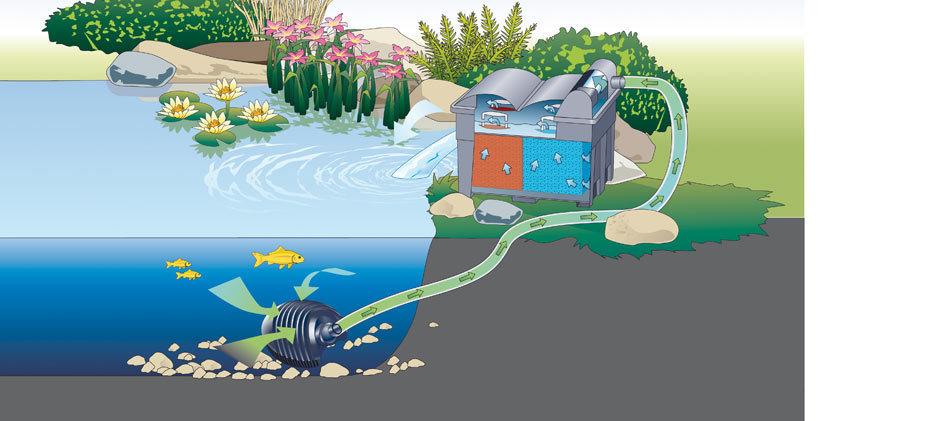 Set completo filtro estanque oase biosmart set 5000 uv 7w for Kit estanque jardin