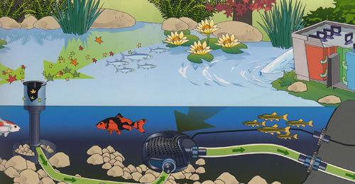 Skimmer oase aquaskim 40 limpador de superficies da lagoa for Estanque ecologico