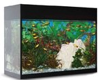Aquarium Aqualux 25 Black
