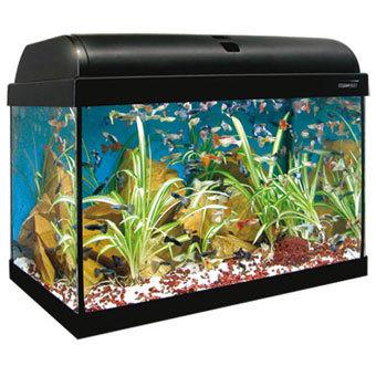 Acuario kit aqualight 25l acuarios baratos for Acuarios baratos