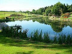 Lona pvc estanques 0 5mm 2x3m para la construcci n de for Lona para estanques